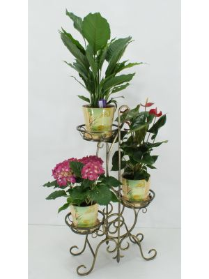 Stand for flowers treble clef 3 buy in Ukraine